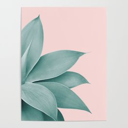 Agave Finesse #3 #tropical #decor #art #society6 Poster