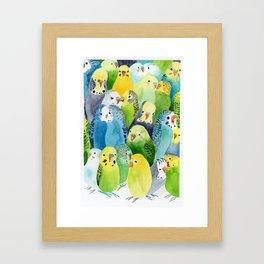 Budgie Village Framed Art Print