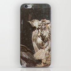 Bye Bye Birdy iPhone & iPod Skin