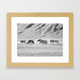 Horses in Iceland Photograph Framed Art Print