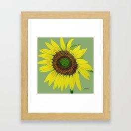 Sunflower painted  Framed Art Print