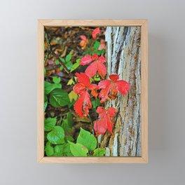 Fare Thee Well Framed Mini Art Print