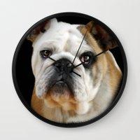 bulldog Wall Clocks featuring Bulldog by Julie Hoddinott