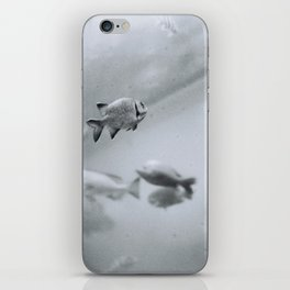 Swimming in Frozen Time iPhone Skin