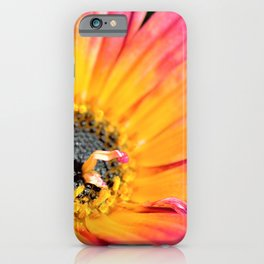 Beautiful Pink Imperfection Flower  by Reay of Light Photography iPhone Case