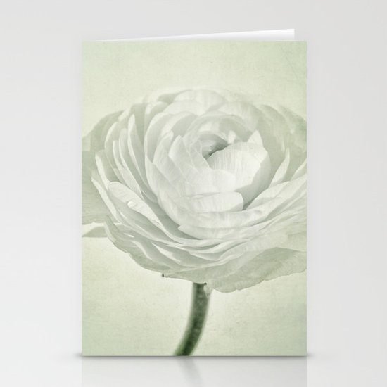 whity Stationery Cards