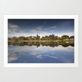 Perfect Reflection Art Print