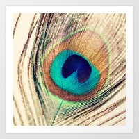 peacock feather Art Prints featuring Peacock Feather  by Laura Ruth