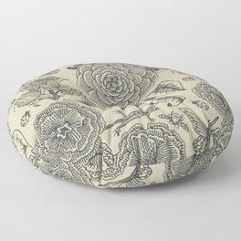 Garden Bliss - vintage floral illustrations  Floor Pillow