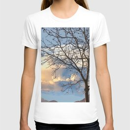trees without leaves in the fall T-shirt