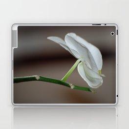 White Orchids Laptop & iPad Skin