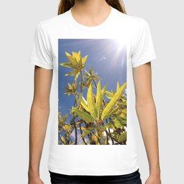 Crotons T-shirt