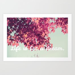 Life Is But a Dream. 1 Art Print
