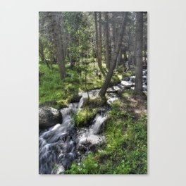 Rill Canvas Print