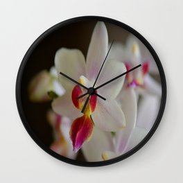 White Orchid Close Wall Clock