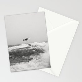 The seagull and the Storm Stationery Cards