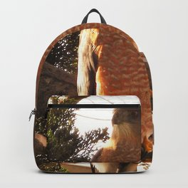 Al the Cooper's Hawk Backpack
