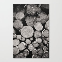 The Woodpile Canvas Print