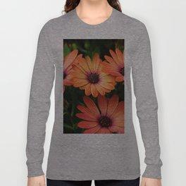 Sunset Daisy Long Sleeve T-shirt