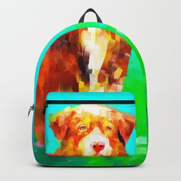 Dog in Water Backpack