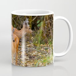 A Trio of Blacktail Deer in the Forest Coffee Mug