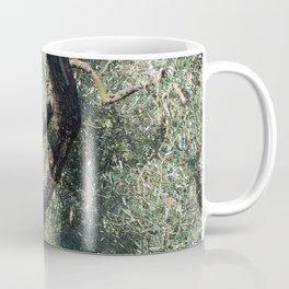 Old Olive Tree Mediterranean Grove Coffee Mug