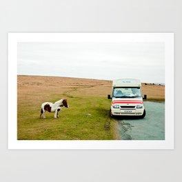 Dartmoor Pony Fancies an Ice Cream Art Print