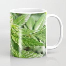 Jamaican Grown Coffee Mug