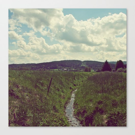 the creek Canvas Print