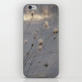 winter dust iPhone Skin