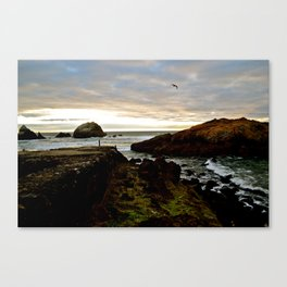 Sutro Bath Sunset w/Bird Canvas Print