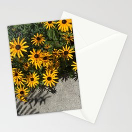 Susans And Cement Stationery Cards