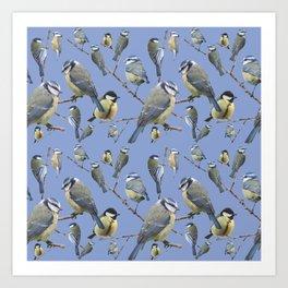 Blue Tit | Paridae Art Print