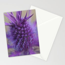 Purple Explosion Stationery Cards