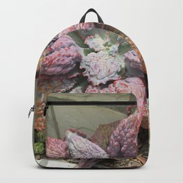 Rainbow succulent Backpack