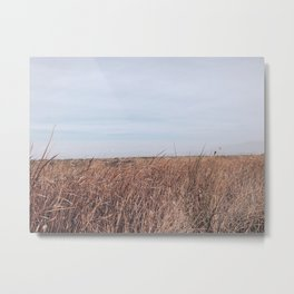 BLUE MOON II / Alviso, California Metal Print