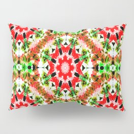 Wishing all a very Prosperous and Healthy  New Year Pillow Sham