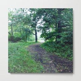 Lost woods Metal Print