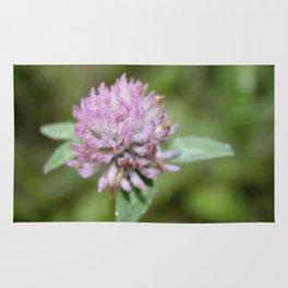 wild spring clover Rug