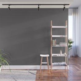 Warm Dark Gray Solid Color Parable to Valspar Blackstrap 4001-2c Wall Mural