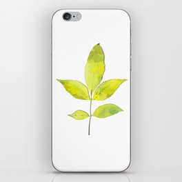 leaves painted with watercolor . designer paintings for eco-style . eco style interior . Sustainable iPhone Skin