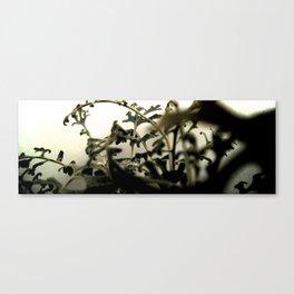 white series (2) Canvas Print
