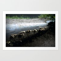 mushrooms Art Prints featuring mushrooms by nast