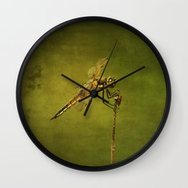 4-Spotted Skimmer Dragonfly Wall Clock