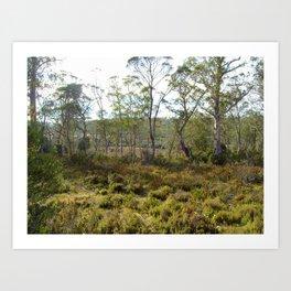 Mountain bush 2 Art Print