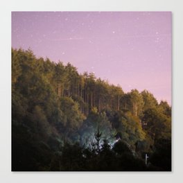 Daynight woodland activities Canvas Print