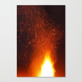 flammidemia Canvas Print