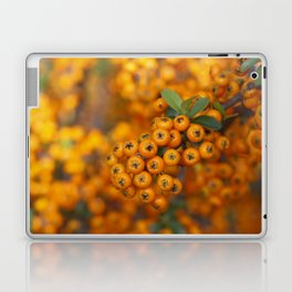 Fall berries in orange Laptop & iPad Skin