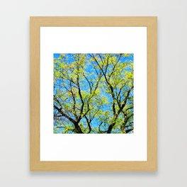 Full of Life Framed Art Print