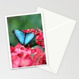 Peek-A-Blue Butterfly Stationery Cards
